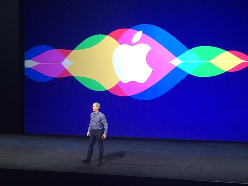 apple ceo